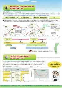 【メール便可】シバゲンDF20g【25年10月】