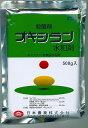 【メール便可】オキシラン水和剤 500g