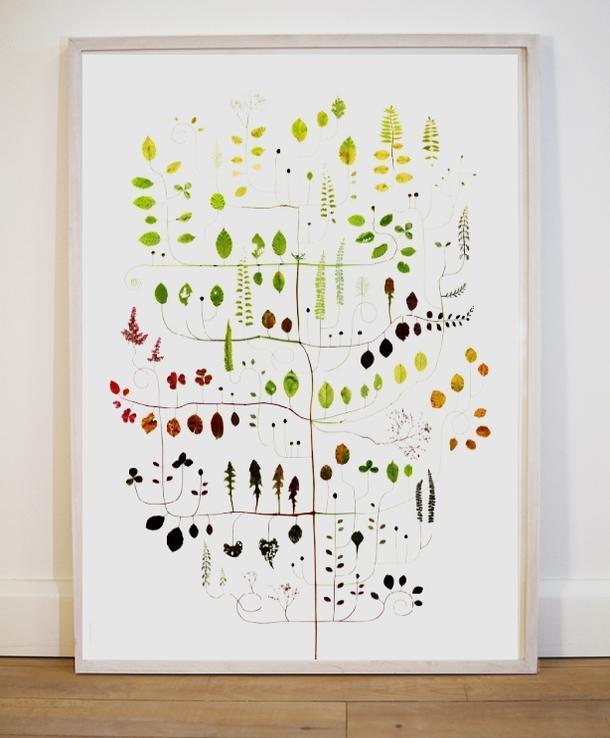 ポスター 北欧 草木の標本 ボタニカル アート ポスター BEECH TREE ブナの木 50x70cm 北欧 ポスター おしゃれ インテリア かわいい 新生活 オリジナル デザイン タペストリー 北欧雑貨