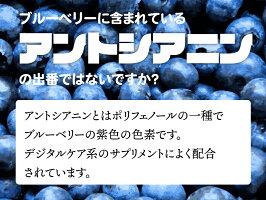 Berryの瞳50ml×6本入りブルーベリードリンクサプリメントサプリジュース100%アントシアニンポリフェノール目眼ジャムピューレ濃厚凝縮国産無添加無着色送料無料眼精疲労かすみ目