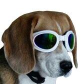 【メール便対応】犬用サングラス/ゴーグル