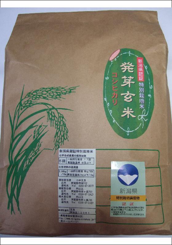 新潟県産 特別栽培米 発芽玄米 コシヒカリ 25kg(5kg*5) 平成29年度産(減農薬・減化学肥料栽培米)