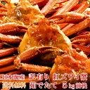 【送料無料】日本海産 訳あり 茹でたて紅ズワイ蟹 たっぷり 5kg【かに カニ 蟹】