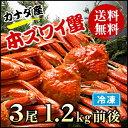 【送料無料】カナダ産 本ズワイ蟹 3尾(総量1.2kg前後)【濃厚な蟹みそ】【ギフト 贈答】【かに 蟹 カニ】