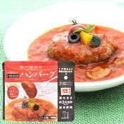 レンジ用煮込みハンバーグトマトソース