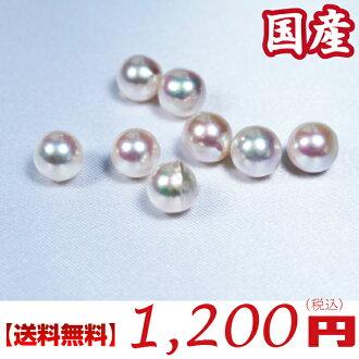 按重量計算的珍珠 !日本生產哦 Akoya 珍珠松 (孔珍珠): 7 毫米珍珠 (哦 akoya 鬆動,鬆動 Akoya 珍珠工藝品露絲,帕拉斯,露絲,珍珠,珍珠松)