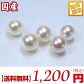 【送料無料】真珠量り売り!日本産あこや真珠ルース:8ミリ珠 (あこや真珠ルース、アコヤ真珠ルース、手芸用ルース、パールルース、ルース、パール、真珠ルース)