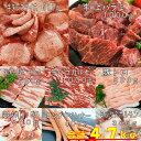 上ハラミ 牛タン 塩タン 薄切り 焼き肉 バーベキュー 食材 BBQ 肉 牛カルビ 牛ハラミ 牛バラ 豚カルビ 豚バラ 牛肉 豚トロ BBQ食材セット パーティー ソーセージ ウインナー ホルモン 鶏肉 豚肉 4.7kg 送料無料 12〜15人前 2