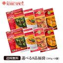 送料無料 MTR レトルトインドカレー 7種類から選べる8品 福袋 (300g×