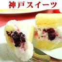 【あす楽】フロマージュブランのチーズケーキ誕生日 誕生日ケー...