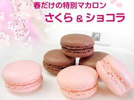 桜(さくら)&ショコラのマカロン/春限定マカロン/ランキング/神戸スイーツ/合格祝い/入学祝い...