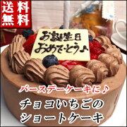 バースデー ショートケーキ チョコレート スイーツ ポイント デコレーション ホワイト