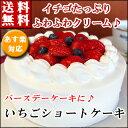 バースデーケーキ 誕生日ケーキ いちごショートケーキ ポイント  倍 2015 送料無料 10P23Sep1...