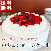 バースデー ショートケーキ スイーツ ポイント ホワイト
