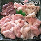 但馬牛 焼肉ホルモンセット 500g 兵庫県産但馬牛 冷凍