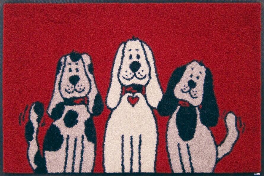 wash+dry(ウォッシュアンドドライ)Three Dogs