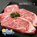 厚切り!!九州産国産牛サーロインステーキ用肉【500g(25...