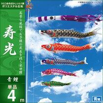 寿光-青鯉4m・単品