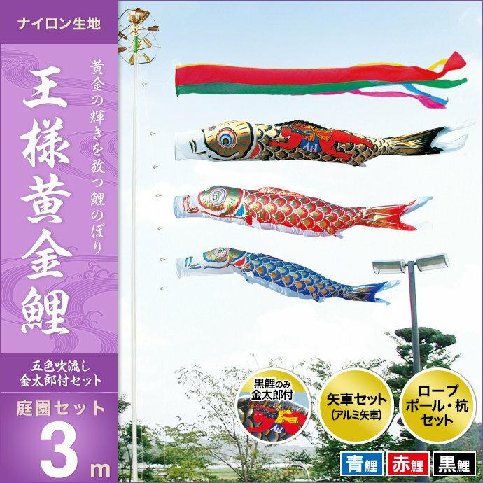 王様黄金鯉(金太郎付)-庭園セット3m