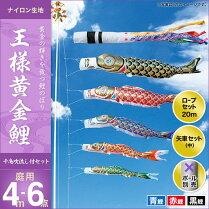 王様黄金鯉(千鳥吹流し)-4m-3匹6点セット