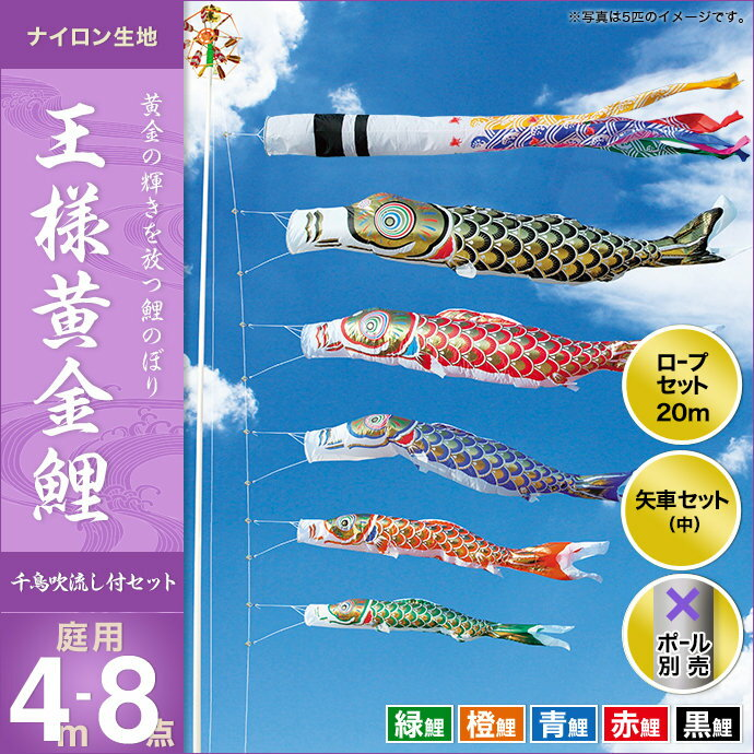 王様黄金鯉(千鳥吹流し)-4m 5匹8点セット