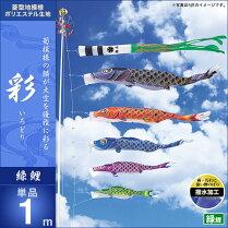 彩-緑鯉1m・単品