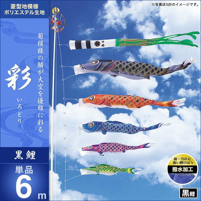 彩-黒鯉6m・単品