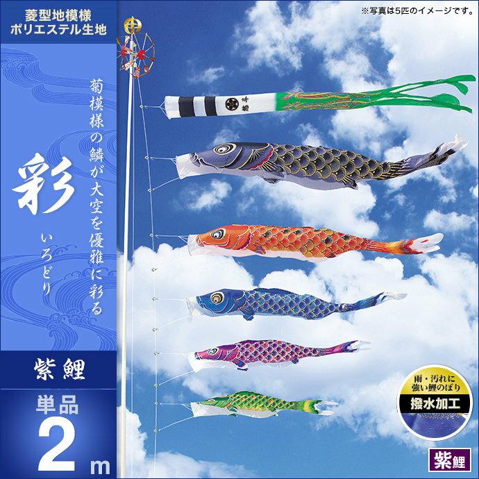 彩-紫鯉2m・単品