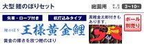 こいのぼり鯉のぼり庭園用庭用キング印鯉鯉幟【2016年新作】王様黄金鯉(千鳥吹流し)4m3匹6点セット【楽ギフ_のし】
