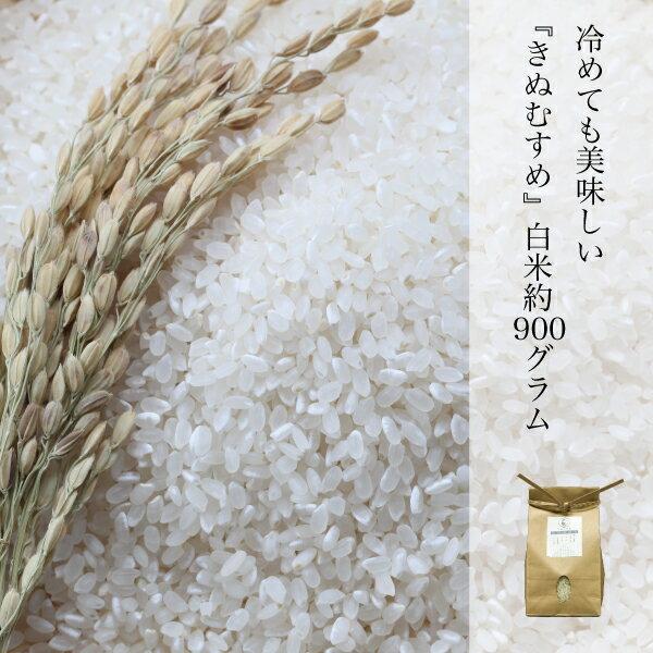 きぬむすめ 白米 約900g 晴れの国 岡山県産 ふっくら もちもち 農家直送 ランク特A取得 米の食味ランキングAランク 北海道 沖縄県 離島は+350円