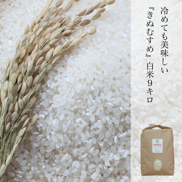 きぬむすめ 白米 約9kg 晴れの国 岡山県産 ふっくら もちもち 農家直送 ランク特A取得 米の食味ランキングAランク 北海道 沖縄県 離島は+350円