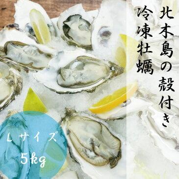 岡山 北木島 冷凍 殻付き 牡蠣 Lサイズ 5kg 約40粒-50粒 1年牡蠣 加熱用 1粒 約80g-100g 冷凍 電子レンジ用 容器付き