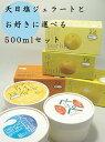 天日塩ジェラート500mlとお好きに選べるアイス・シャーベット500mlセット【送料込み(北海…