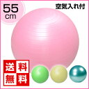 バランスボール ヨガボール 55cm【 送料無料 】エクササイズバランスボール 55cm ( ポンプ付 )...