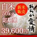【販売中】【特別栽培】新潟県産コシヒカリ 白米 50kg定期便(5kg袋×10回) 「おらが愛情」 9月30日から出荷開始
