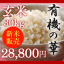 【販売中】【無農薬】新潟県産コシヒカリ 玄米 30kg 「有機の華」 10月18日出荷開始