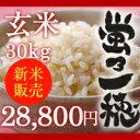 【販売中】【無農薬】新潟県産コシヒカリ 玄米 30kg 「蛍乃一穂」