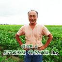 【2021年予約開始】新潟県産 黒埼産茶豆 くろさき茶豆1kg箱 お中元 ギフト(生産者・渡辺)