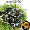 【TVで紹介】天然活きモクズガニ オス・メス混合1kg(5匹〜10匹)(採取者:貝沼)