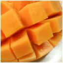 通常のマンゴーは表面が赤みがかっているのに、完熟キーツマンゴーは緑色!!だけど果肉は鮮や...