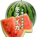 【送料無料】市場直送 沖縄県産冬スイカ1個入(2,5〜3kg...