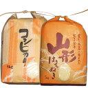 令和2年山形県産はえぬき5kg・コシヒカリ5kgセット 白米 精米済(送料無料)