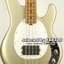 【New】Musicman StingRay4 Ghostwood Roasted Maple White Pearl Pickgurd(selected by KOEIDO)店長厳選、別格の命を持つ最新スティングレイ!・・・