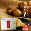 【ゆうパケット送料無料】高知県産黄金しょうが100% しょうが粉末 50g |生姜 高知県産 国産 しょうがパウダー 乾燥ショウガ 無添加 ジンジャーパウダー 温活 冷え対策