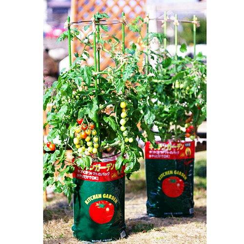 デルモンテ キッチンガーデン トマト用培養土 15L
