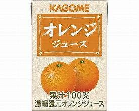 オレンジジュース業務用-8641 100mL≪検索用≫【05P05Dec15】