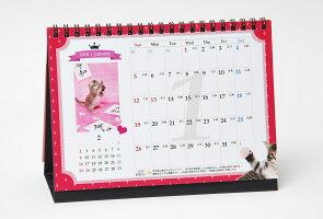 『猫様のお言葉』ネ・コ・ト・バ卓上カレンダー(文:志茂田景樹/2020年版)