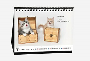 『猫様のお言葉』ネ・コ・ト・バ卓上カレンダー(文:志茂田景樹/2019年版)