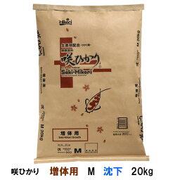 ☆キョーリン 咲ひかり 増体用 M 沈下 20kg【送料無料】【♭】