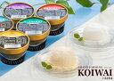 小岩井農場特製アイスクリーム10個セット [バニラ&牛乳&りんご&ヨーグルト&ヨーグルト仕立てブルーベリー]【スイーツ ギフト】